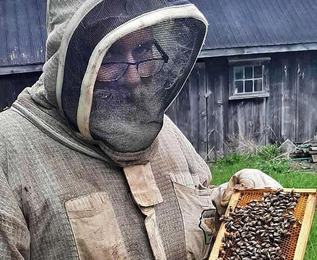 Moodie Bees